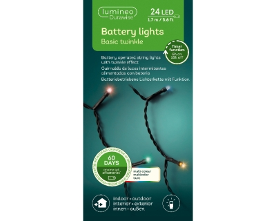 LED DURAWISE BASIC TWINKLE LIGHTS INDOOR OR OUTDOOR 3 COLOURS 24 LIGHTS