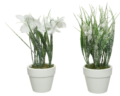 ARTIFICIAL FROSTED PLANT IN WHITE 2 DESIGNS 22CM