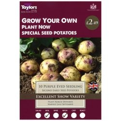 TAYLORS PURPLE EYE SEEDLING X10 SPECIAL SEED POTATOES
