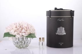 Cote Noire Luxury Range Hydrangea  Blush in Crystal Vase