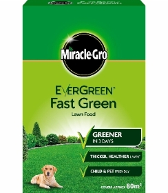 MIRACLE GRO EVER GREEN FAST GREEN