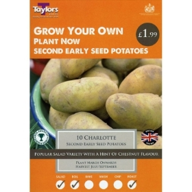TAYLORS GEMSON X10 SECOND EARLY SEED POTATOES